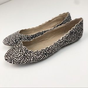 Kelly & Katie Leather Animal Print Scalloped Flats